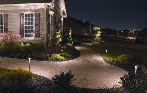 Pathway lighting.