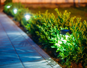 landscape lighting installation in lancaster, pa